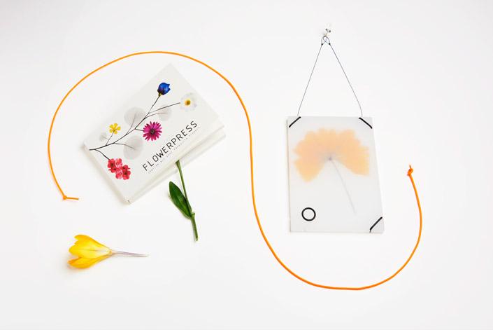 Das Studio Carmela Bogman schafft es, mit überraschendem Design die Neugier zu kitzeln. Wir stellen Carmela im heutigen #recommondaytion Interview vor.