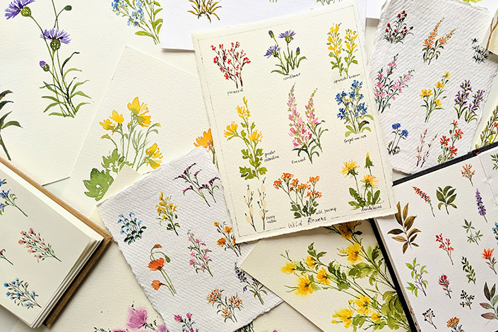 recommondaytion-sushhegde-wildflowers-assorted-papier-direkt