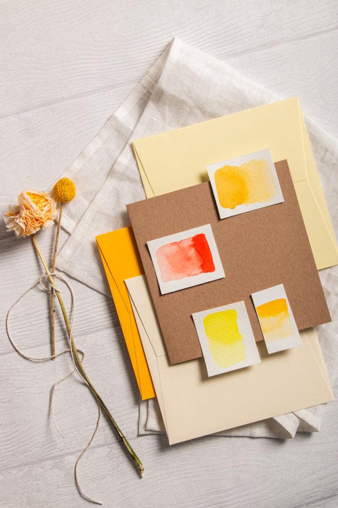 Quadratsiche Muskatkarten mit passenden, farbigen, Colorplan Hüllen
