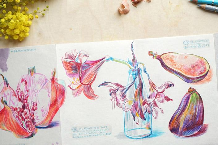 Botanical Drawing einer Amaryllis von Elke Hanisch