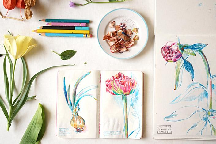 Sketch Book mit Botanical Drawings im Zusammenspiel mit echten Pflanzen