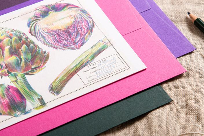Botanical Drawings Postkarte mit einer Artischocke als Motiv