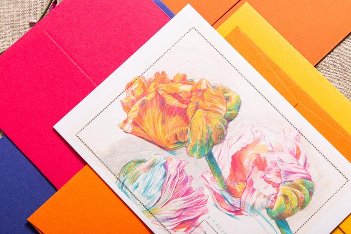 Botanical Drawing mit farblich abgestimmten Colorplan Umschlägen