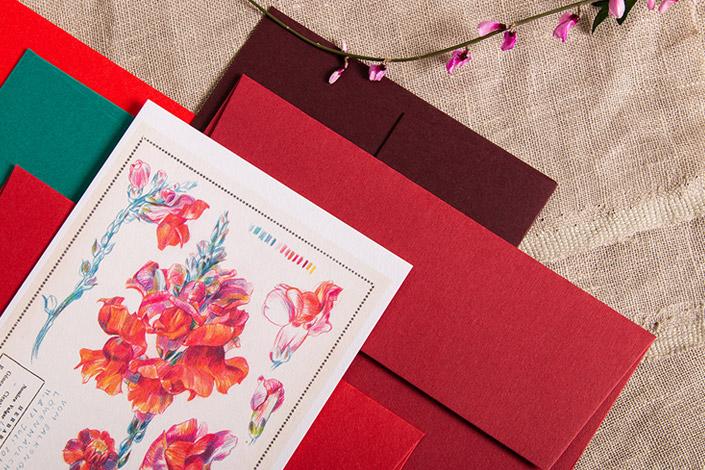 Botanical Drawing von Löwenmäulchen in farbigem Zusammenspiel mit Colorplan Kuverts