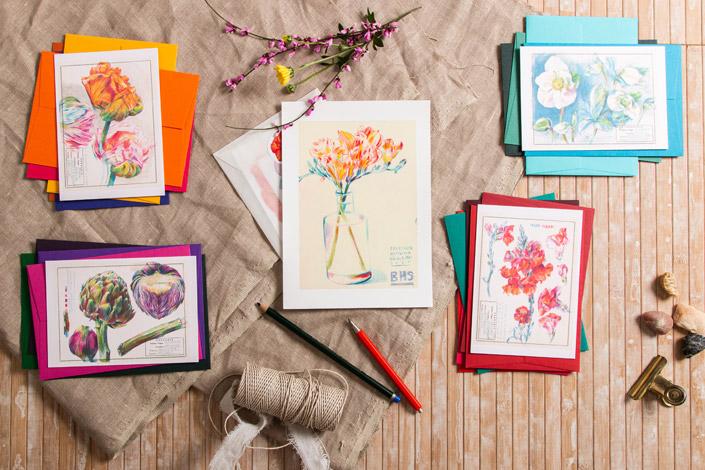 Verschiedenfarbige Botanical Drawings von Elke Hanisch mit passenden Colorplan Umschlägen