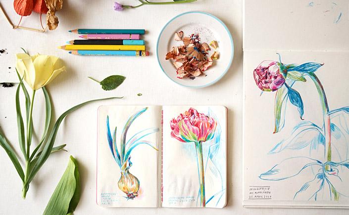 Botanical Drawings von Elke Hanisch