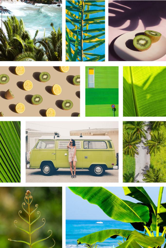 Moodboard verschiedener Sommer Impressionen zu Colorplan Kiwigrün