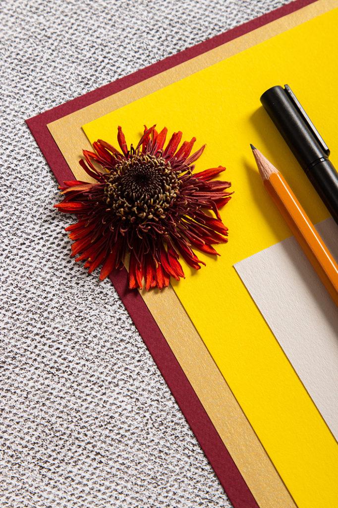 Feinpapier Colorplan in den Farben Sonnengelb, Dunkelrot und Sand.