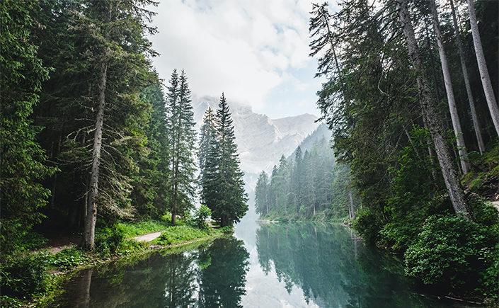 Landschaftsfotos mit See und Tannen, als Symbolbild für den Blobeitrag Umweltzertifikate bei Papier Direkt